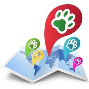 petlocal servizi di geolocalizzati icona geolocalizzazione